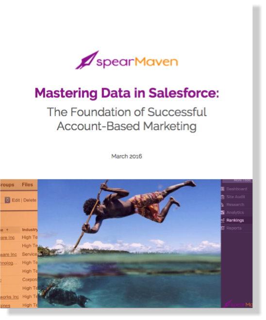 spearMaven Mastering Data in Salesforce White Paper